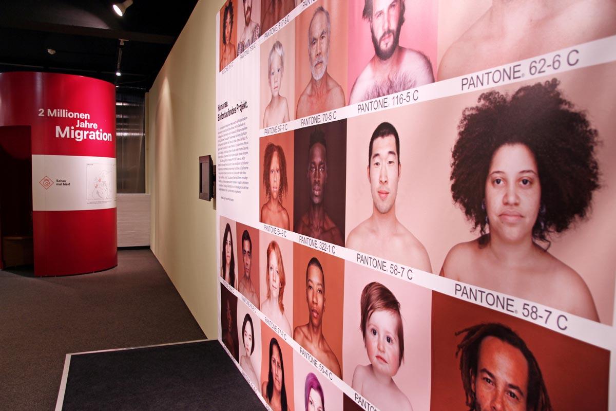 """Pantone Projekt in der Sonderausstellung """"Zwei Millionen Jahre Migration"""" im Archäologischen Museum Hamburg"""