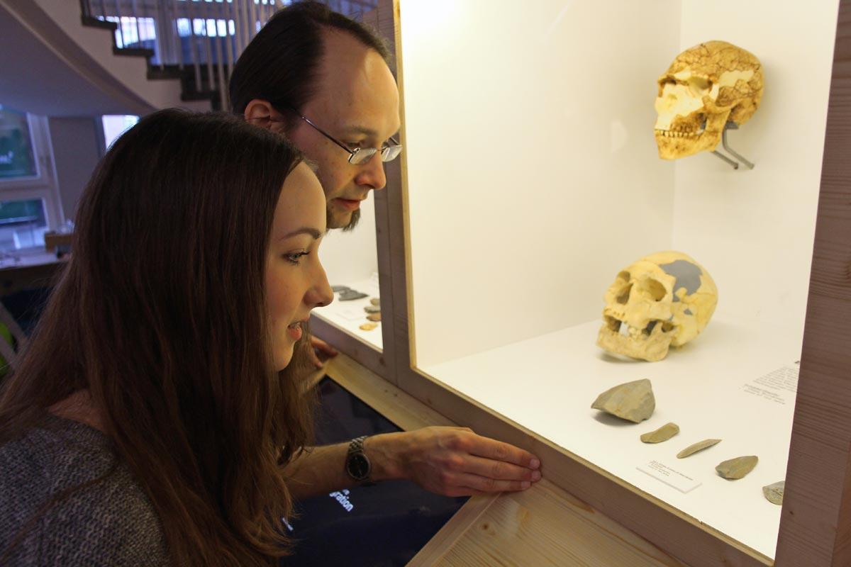 """Vitrine in der Sonderausstellung """"Zwei Millionen Jahre Migration"""" im Archäologischen Museum Hamburg"""