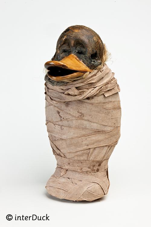 """Mumie in der Sonderausstellung """"Duckomenta"""" im Archäologischen Museum Hamburg Copyright: interDuck"""