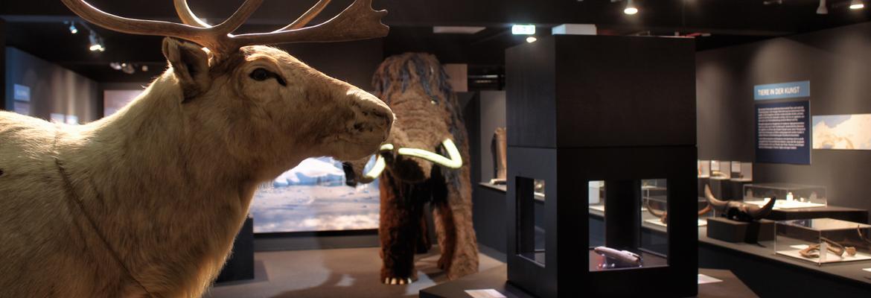 EisZeiten: Das älteste Mischwesen der Welt
